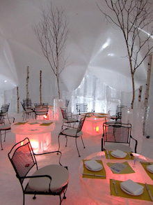 おかずブログ-氷のレストラン