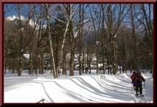 ロフトで綴る山と山スキー-0116_1412