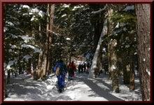 ロフトで綴る山と山スキー-0116_1157