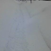 雪積もったなあ