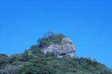 小笠原父島エコツアー情報    エコツーリズムの島        小笠原の旅情報と父島の自然-朝立岩