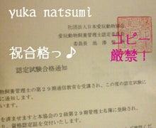 *★じゃじゃ馬貴族★* 夏波夕日(Yuka Natsumi)-合格通知 動物