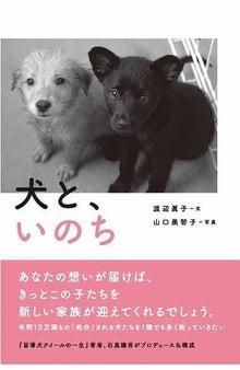 愛しい大切な命-犬と、いのち