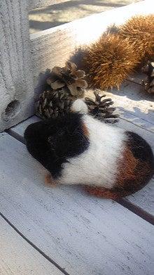 $『Anneのてしごと』*羊毛と毛糸玉とわたし*~のんびり制作日記~-DVC00040.jpg