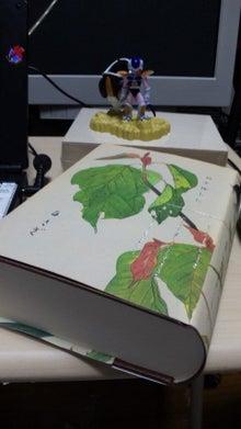 じぇねらる大佐の孤軍奮闘戦記-DVC00942.jpg