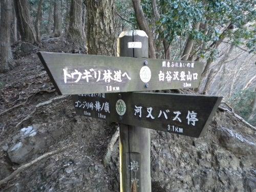 12番目のお山―棒ノ嶺 | お山へいこう! ~Going up the mountain~