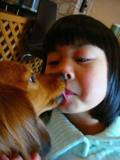 旅犬Lanileaのほほん風船記-izacafe mY's