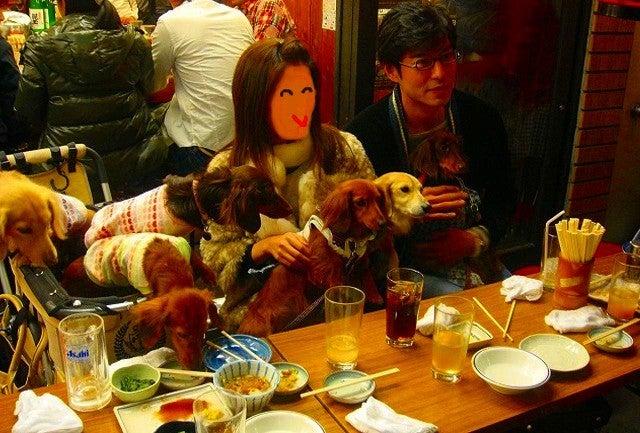旅犬Lanileaのほほん風船記-居酒屋 浩司 浅草