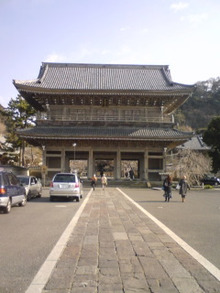 三十路姉さんプラスパワー日記-光明寺