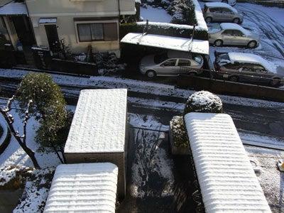 【たんぽぽの惑星】-初雪