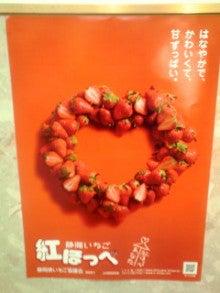 ☆たんでぃがぁ たんでぃ☆-100124_2007~01.jpg