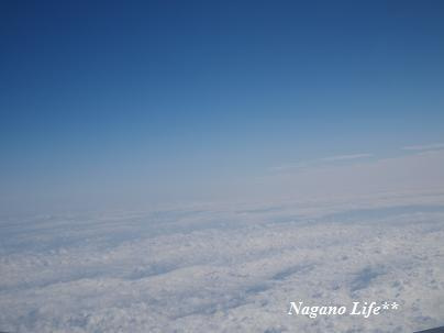 Nagano Life**-くも