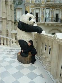 Grumpy Monkey(不機嫌なおさるさん)の観察日記-mgm panda