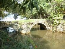$グアムの観光-タライファク橋の写真5