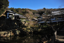 かっちゃんの日記-円覚寺(5)