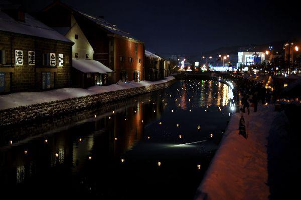 北海道の野生動植物写真-小樽運河