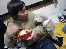 Live!Love!!Laugh!!!-valentine's day