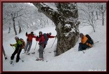 ロフトで綴る山と山スキー-0213_1356