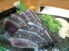 GOGO!魚群日記
