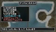 クラシックダンジョン ~扶翼の魔装陣~ オフィシャルブログ-100217_08.jpg