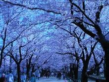 新潟 春夏秋冬 いいこと発見