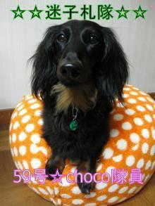 ☆Lovely choco☆