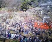 ラブエステ★ A嬢のブログ-20100220124154.jpg