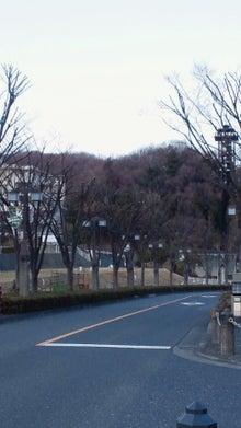 365日緑魂-NEC_0010.jpg