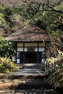 かっちゃんの日記-明月院(2)