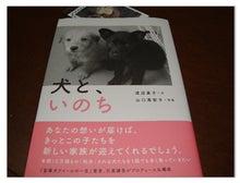 One's  Partner ~ withさくら&あゆむ~