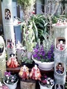 オカメインコのももちゃんと花教室と旅日記-画像0176.jpg