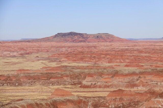 アリゾナ州からTomi の Photo Blog