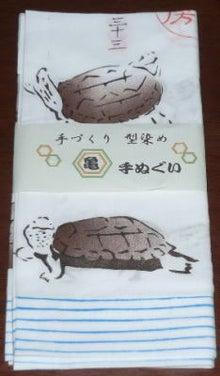 生態工房 手捺染 カメ手ぬぐい(クサガメ)
