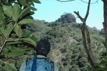 小笠原エコツアー 父島エコツアー         小笠原の旅情報と小笠原の自然を紹介します-ハートロック