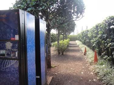 横浜発 驢馬人の美食な日々-Dole Plantation13