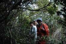小笠原エコツアー 父島エコツアー         小笠原の旅情報と小笠原の自然を紹介します-2.28