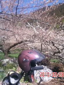 """山岡キャスバルの""""偽オフィシャルブログ""""「サイド4の侵攻」-100228_1130~01.JPG"""