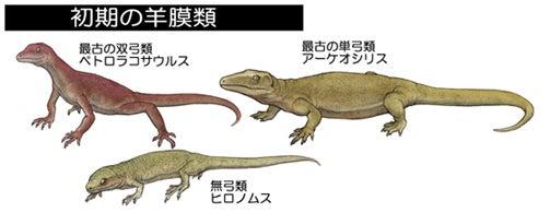 川崎悟司 オフィシャルブログ 古世界の住人 Powered by Ameba-初期の有羊膜類
