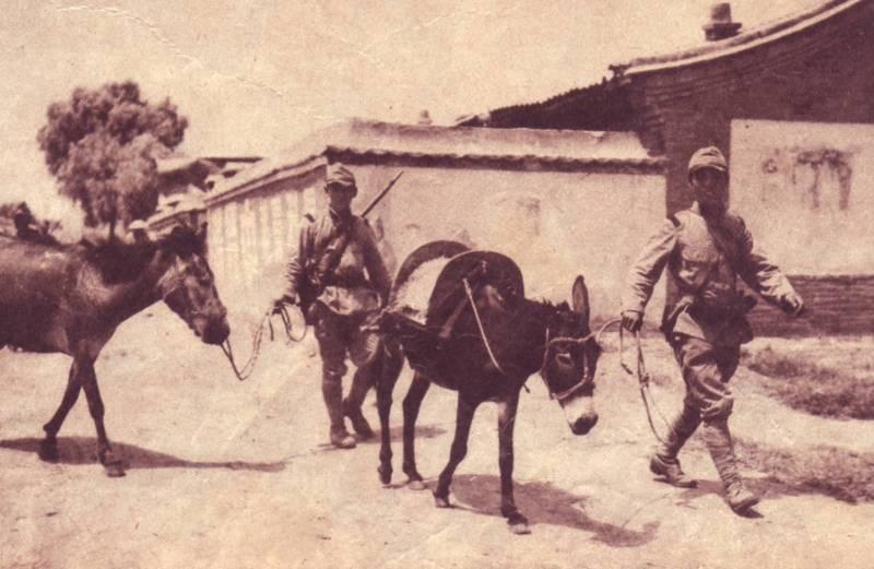 帝國ノ犬達-驢馬