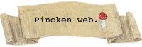 pinokenweb