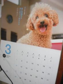 犬太郎が来た!-CIMG0009-0228.jpg