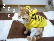 ペコ太日和-ZZZZ