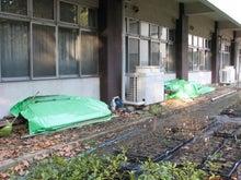 緑化推進事業の活動報告