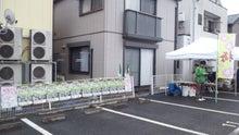365日緑魂-NEC_0049.jpg