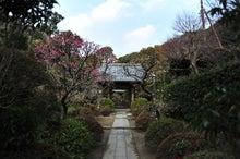 かっちゃんの日記-建長寺5