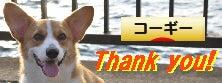 Enjoy★コーギー★Rock-★ありがとうッス★