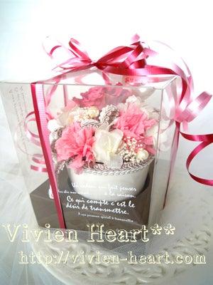 Vivien Heart** ~ヴィヴィアンハート~-箱入り