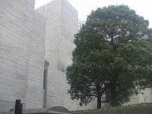 岡本英子事務所インターン生2010のブログ