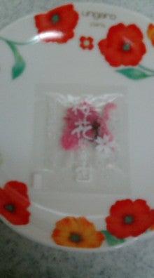 アロマセラピー エリカ-桜花