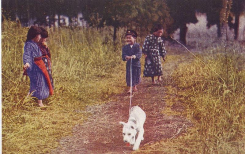 帝國ノ犬達-犬と子供